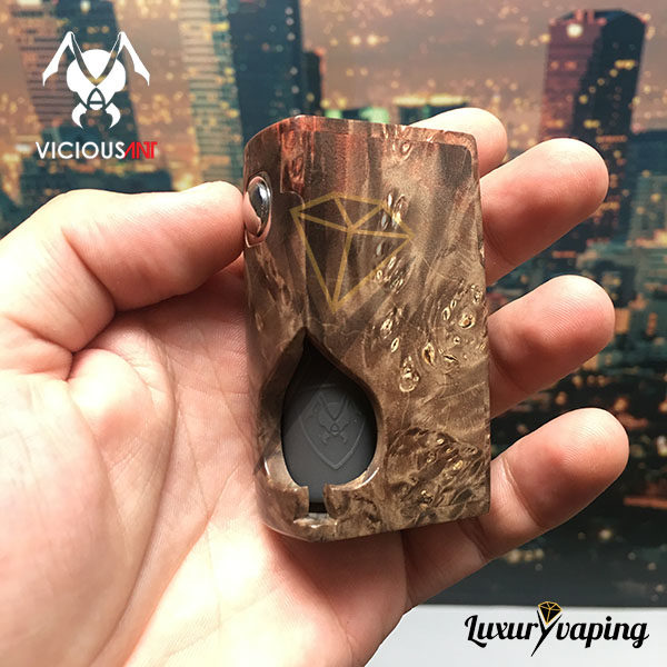 Spade Stabwood 178 Bottom Feeder Vicious Ant BF